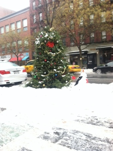 Someone put their fully decorated tree on the street. It's been there about a month now. Makes me laugh every time I walk by.