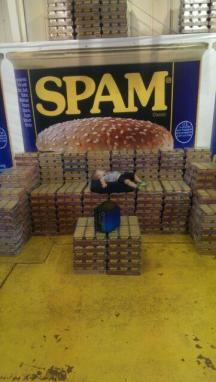 All hail Nolan, King of Spam