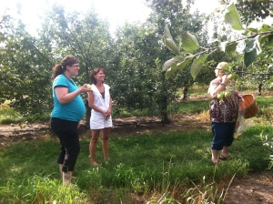 Preparing for Baby Nolan with an apple orchard baby shower.